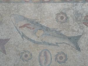 Algarve roman mosiacs