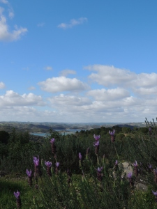 View of Barragem de Odeleite on the road to Alcoutim