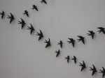 Swifts on a wall in Loulé