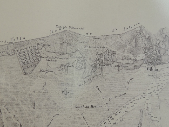 The 1855 map