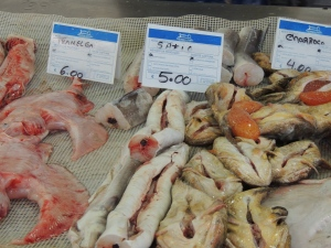 Skinned conger eels along with the Torpedo Fish and
