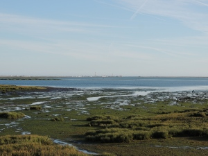 The same channel from a slightly different angle and during a lower tide