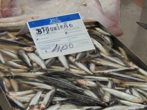 Anchovy - its home territory is the Mediterranean and Atlantic up to the Bay of Biscay