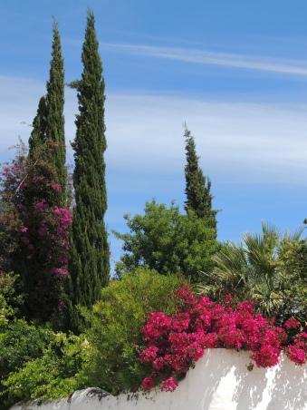 Tavira's gardens