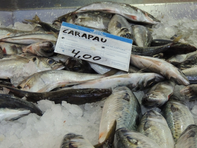 Horse Mackerel - note the price, more expensive although many say not as delicious