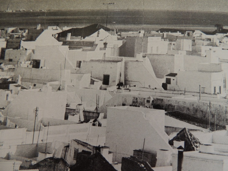 Olhão's rooftops