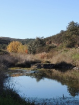 River crossing no2