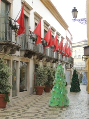 Christmas Trees in Faro
