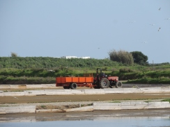 Working the saltpans