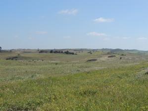 Campo Branco