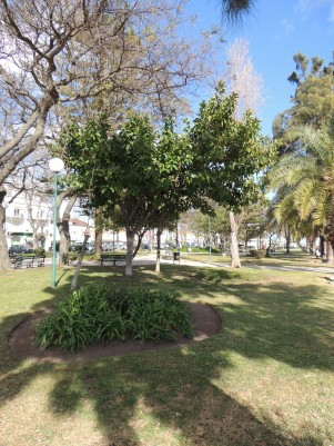 Jardim Patrao Joaquim Lopes