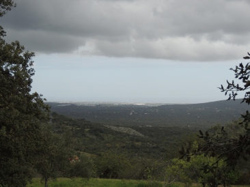 Atlantic views