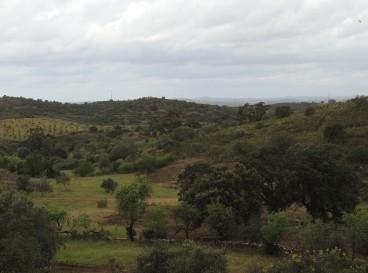 Approaching Torneiro
