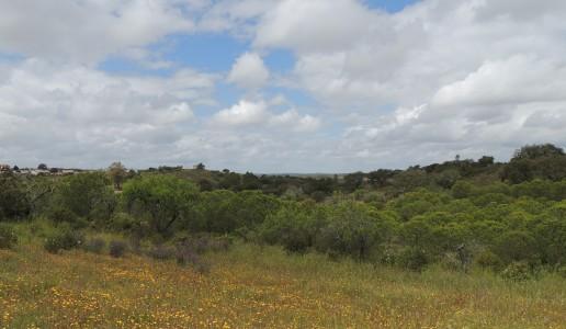 Outskirts of Balurco de Baixo