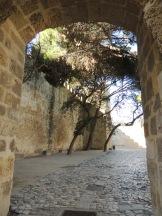inner-walls