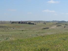 plains-of-alentejo