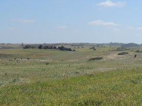plains-of-alentejo