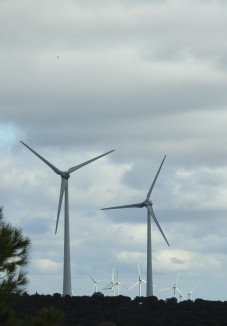 and lots of wind turbines