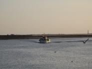Fishermen arriving