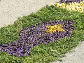 Fish in lavender