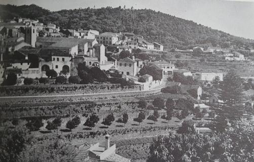 Dan saw cultivated terraces outside Monchique