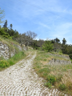 One of the steep sections