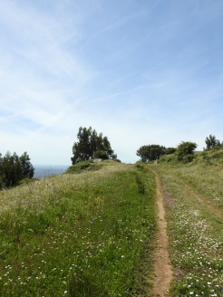Country tracks in the serra