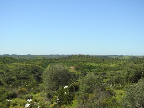 Guadiana hills