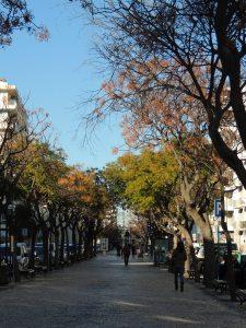 Avenue of the Republic