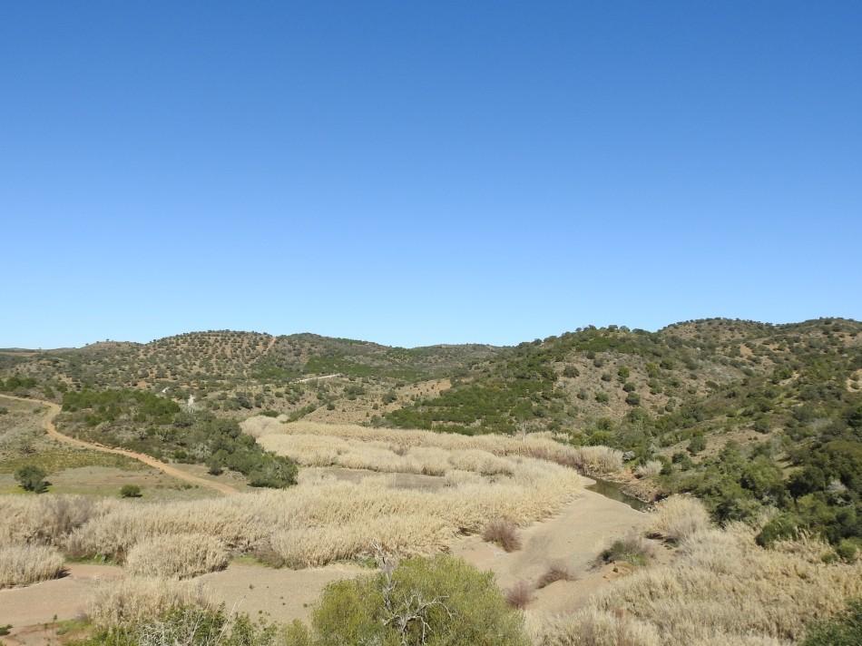 Riberia da Foupana looking very dry