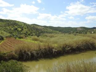 Riberia Foupana