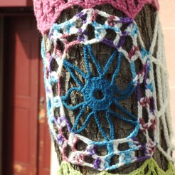 a cobweb