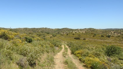 Serra paths