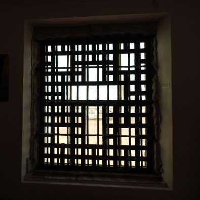 Looking through the window